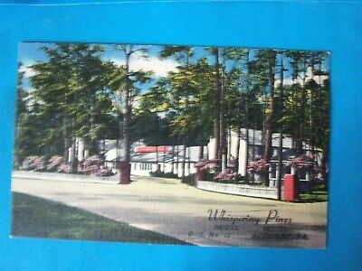 "Whispering Pines Motel, Accomac, Virginia Vintage 3.5""x5.5""Postcard"