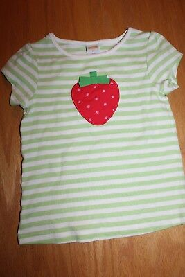 NWT Gymboree Strawberry Sweetheart size 4T Green Striped Strawberry Shirt Top