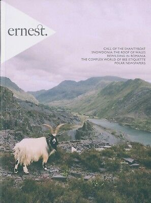 Ernest Journal - Issue 8