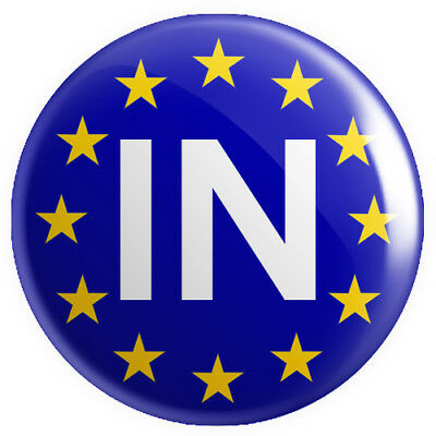 In (Remain Brexit) BUTTON PIN BADGE 25mm 1 INCH UK Europe EU Flag Referendum