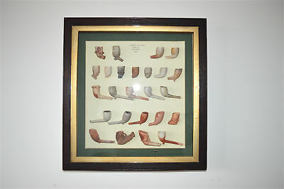 Superb antique wall display of Victorian clay pipes found at Gravesend Kent