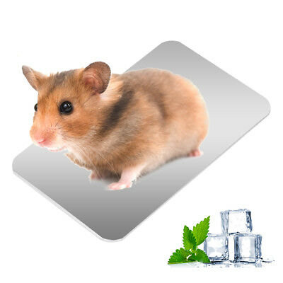 Pets Summer Cooling Mat Heat Dissipation Cooler Pad for Chinchillas Hamsters
