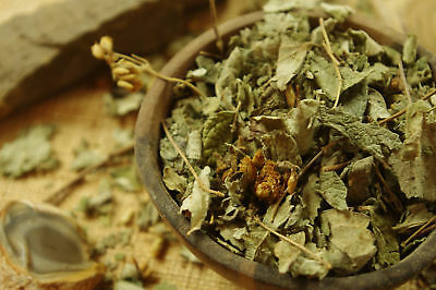 Calea Zacatechichi - Mexican Dream Herb - Thle Pelakano - Leaves of the gods