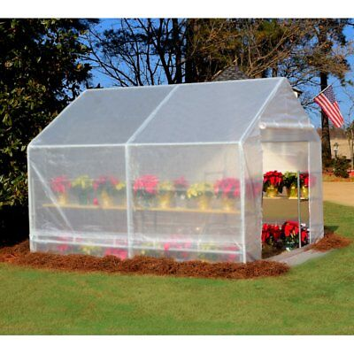 King Canopy GH1010 10-Feet by 10-Feet Fully Enclosed Greenhouse, Clear, 10.25