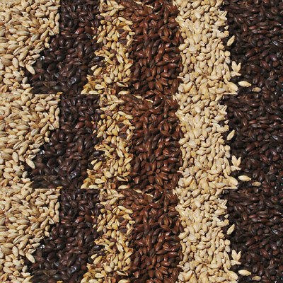 Malt & Grain Per 5KG All Grain Home Brew Beer Brewing