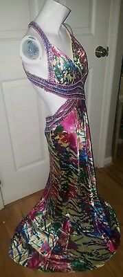 60effa9e2ade Cache Formal Prom Homecoming Dress Gown Sexy cutout Open back beaded sz 4  floral