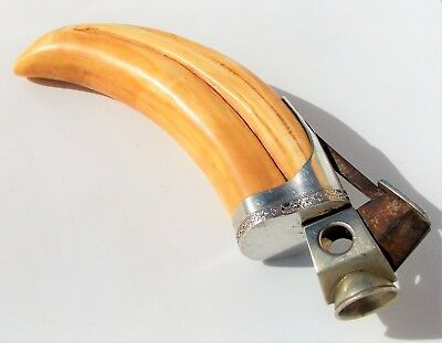 Rare Stunning Victorian Sterling Silver Mounted Wild Boars Tusk Cigar Cutter