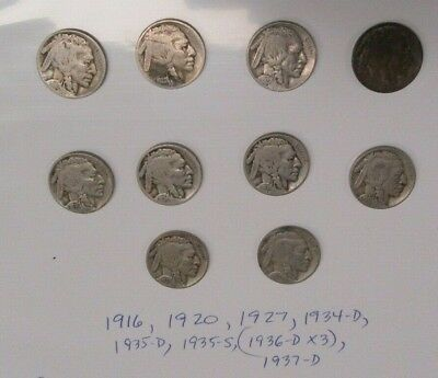 Buffalo Nickels  10 Coins Sold as Lot  Mostly Full Date