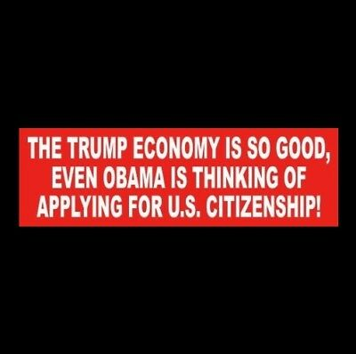 "Funny ""THE TRUMP ECONOMY IS SO GOOD"" Anti Obama BUMPER STICKER Donald MAGA 2020"
