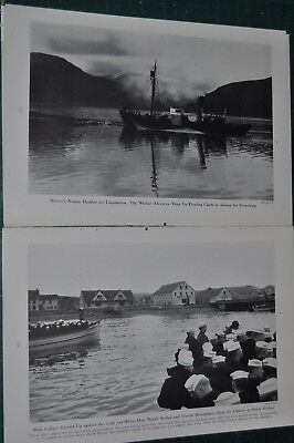1942 ALEUTIAN ISLANDS magazine article, ALASKA Botany, pre-WWII expedition