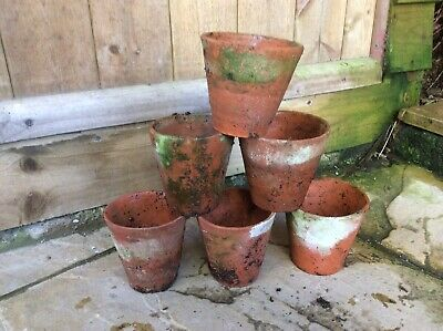 Antique Terracotta Plant Pots 4 Inch