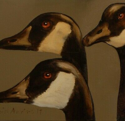 CANADA GEESE : ORIGINAL OIL PAINTING : Poultry Goose Bird Art by David Andrews