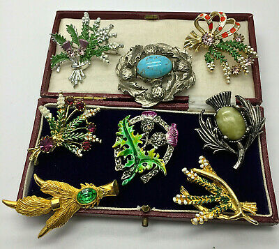 Vintage Jewellery Mixed Lot Scottish Enamel/agate/thistle/heather Brooches/pins