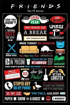 Friends Poster Infographic 61x91.5cm