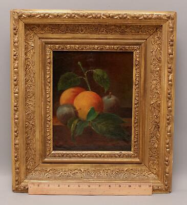 19thC Antique American Still Life Oil Canvas Painting, Oranges & Plums, NR