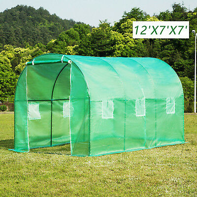 12'x7'x7' Walk-in Polytunne Greenhouse Steeple Larger Green House Garden Plant