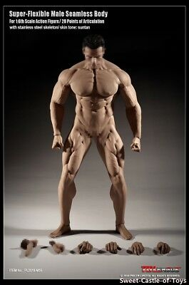 1/6 Phicen Super Flexible Male Muscular Seamless Body Tbleague M35 TBLeague