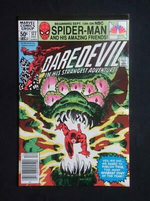 Daredevil #177 MARVEL 1981 - NEAR MINT 9.8 NM - Stan Lee comics!