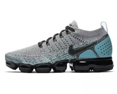 NEW Sz 11 Nike Air Vapormax Flyknit 2 Running Shoe Dusty Cactus 942842-104