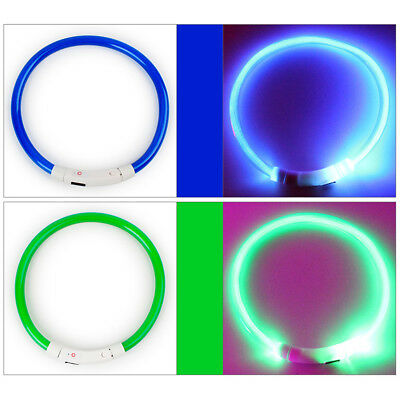 AC_ Rechargeable LED Night Flashing USB Charging Pet Dog Puppy Neck Collar Sweet