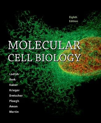 Molecular Cell Biology by Harvey Lodish 8th [PDF] free shipping