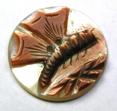 """BB Antique Iridescent Shell Button Cameo Carved Dragonfly - 7/8"""" Beautiful!"""
