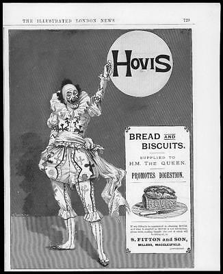 1894 Antique Print Advertising -  Hovis Bread Loaf Biscuits  Clown    (002)