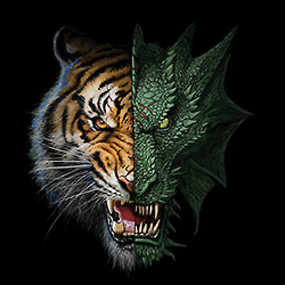 Half Dragon Tiger Mens Tank Top Size Small to X Large  Pick Your Size