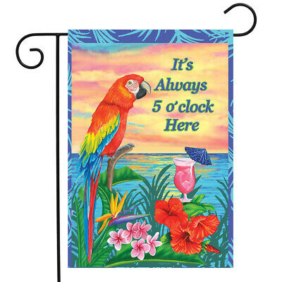 28x40 Dink Up Me Hearties Parrot Flag 28x40 2 SIDED NYLON House Garden Flag