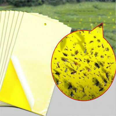 20pcs Yellow Sticky Glue paper Insect Trap Catcher Killer Fly Aphids Wasp Lot