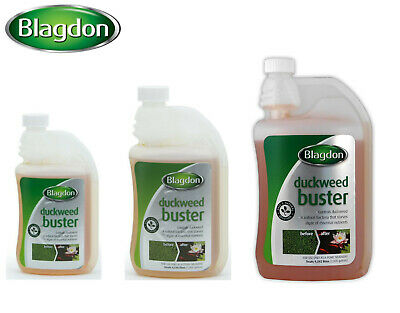 *New* Blagdon Interpet Duckweed Buster Fish Pond Treatment Algea Control 3 Sizes