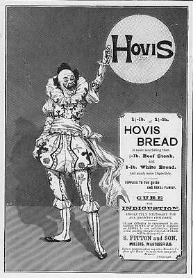 1895 Antique ADVERTISING Print - HOVIS BREAD Biscuits Royal Suppliers Clown (27)