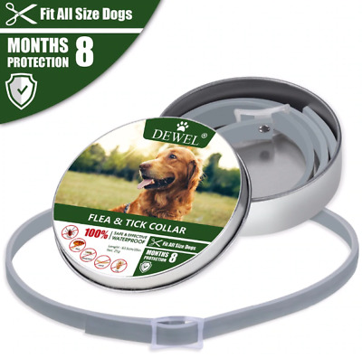 Dewel Flea & Tick 8 Month Collar for Large Dogs over 18 lbs, Free Shipping