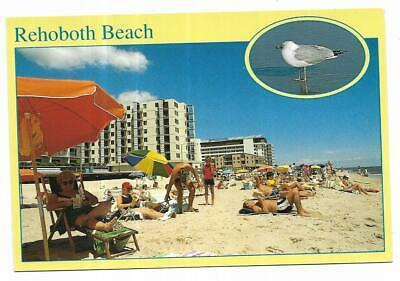 Delaware Chrome Postcard Greetings From Rehoboth Beach Seagull Hotels Condos