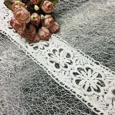 2x1 yd Vintage Embroidered Lace Edge Trim Ribbon DIY Applique Sewing White