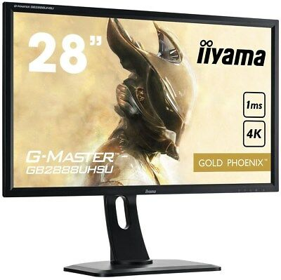 Iiyama or Phoenix G-Master (28 Pouce) Écran LCD Led-backlit 1000:1 300cd/M2