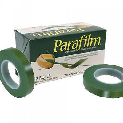 Floristry parafilm stem tape 12 rolls also as grafting tape floral plant stems