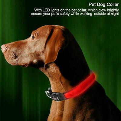 USB Rechargeable LED Luminous Dog Pet Safety Collar Night Light Glow Adjustable