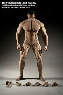1//6 Henry Cavill Superman Head WITH Phicen Seamless Male Muscular Body M34❶USA❶