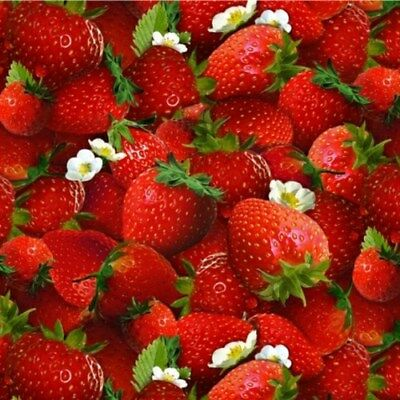 Food Festival Fresh Ripe Strawberries and Flowers Cotton Fabric Fat Quarter