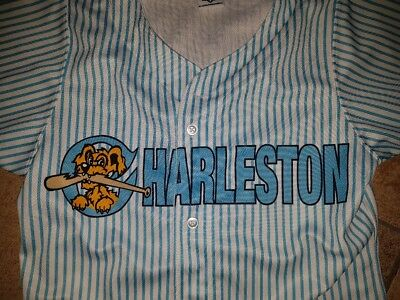 Jersey Base ball Charleston River Dogs Wilson