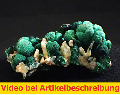 5756 Pyromorphite Malachit Cerussit ca 6*8*5 cm Rum Jungle Australien MOVIE
