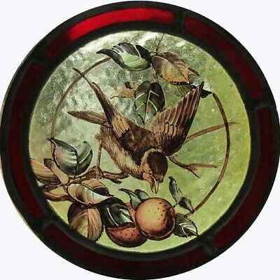 Stunning Rare English Painted Bird Victorian Stained Glass Roundel