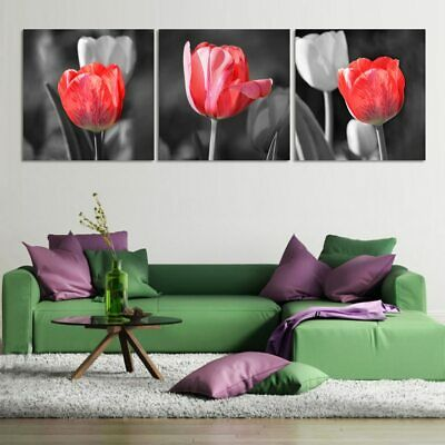 3 Panel Red Tulips on Black & White Modern Decor Canvas Wall Art HD Print