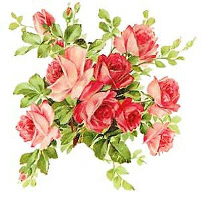 VinTaGe IMaGe PinK & ReD RoSe BouQueTS SHaBbY WaTerSLiDe DeCALs
