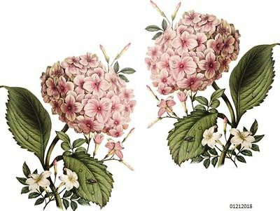 VinTaGe IMaGe XL PinK HyDRanGeaS ShaBby DeCALs TRanSFeRs ~FuRNiTuRe SiZe~