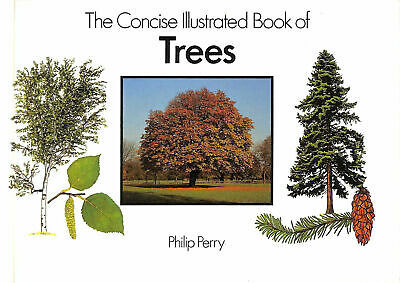 The Concise Illustrated Book of Trees by Perry, Philip