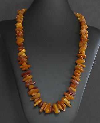 64 Grams Vintage Baltic Butterscotch Amber Bead Nugget Necklace