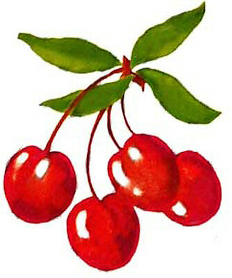 VinTaGe IMaGe BRiGhT ReD CHeRrieS On THe ViNe SHaBbY WaTerSLiDe DeCALs