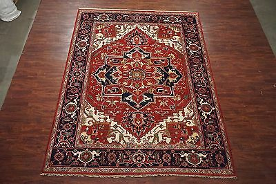 Persian 9X12 Serapi Hand-Knotted Veg' Dye Antiqued Wool Area Rug (9.1 x 12.0)